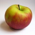 jonagold-apple-456