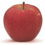 vh_fruit_morrensjonagored_0